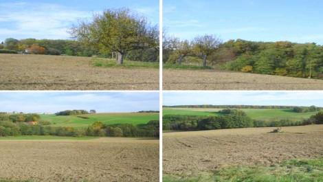 Baugrund für Haus und Hof mit circa 13 Hektar Grund. Weitblick in die Natur!