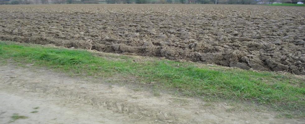 Kirchberg an der Raab: Ebenes ca. 3,5 Hektar Ackerland zu kaufen. VERKAUFT!