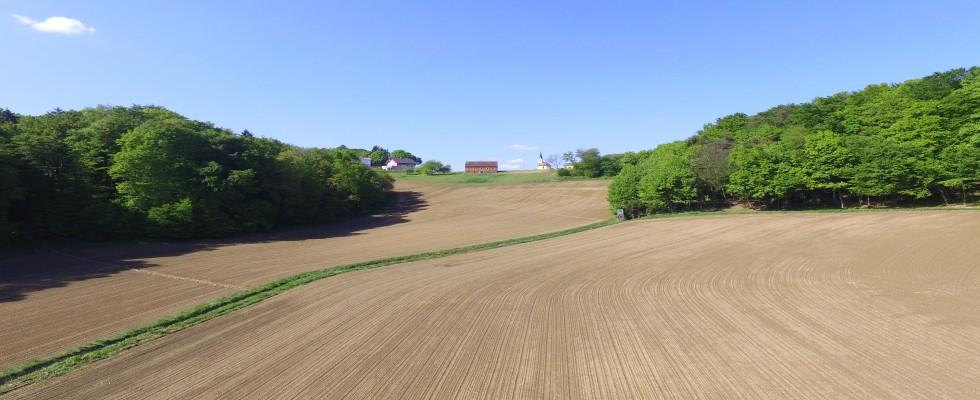 Renovierungsbedürftiges Haus mit ca. 5,8 Hektar zu kaufen!