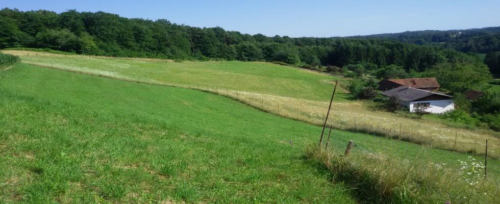 Landwirtschaft mit ca.6,6 Hektar Grund für Sonnenanbeter und Ruhesuchende. Herrliche Lage!