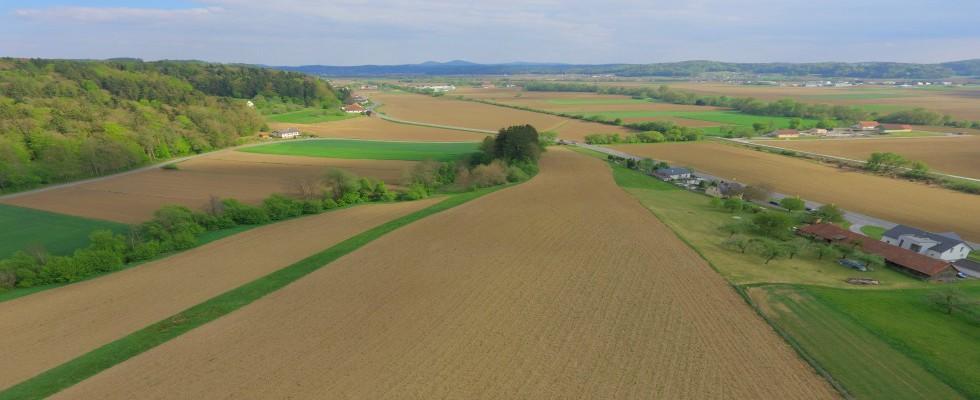 Fladnitz / Raabtal: Land-Forstw. Flächen zu kaufen! Teilkauf möglich!