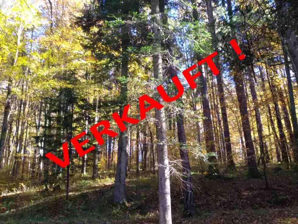GRAZ Umgebung: Mischwald circa 2,1 Hektar, für Eigenbedarf oder für Anlage.