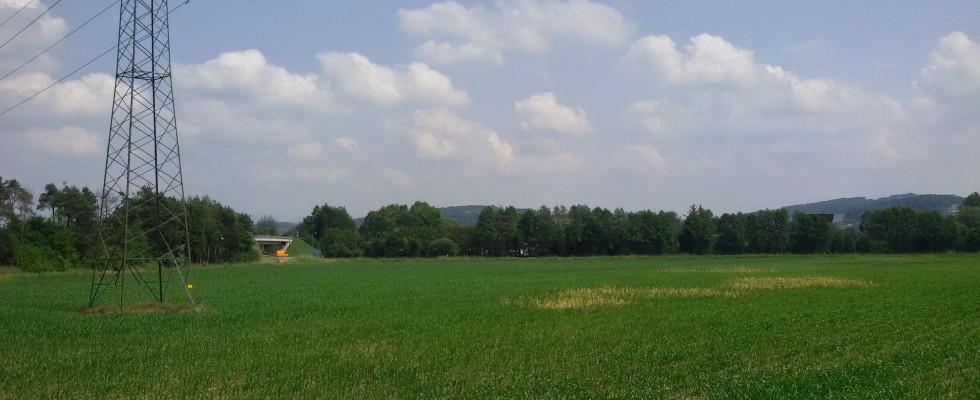 GLEISDORF:  Ebener Gewerbegrund circa 30000m².  TOP LAGE!