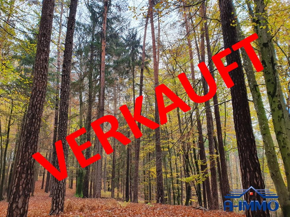ST. MAREIN BEI GRAZ:  SCHÖNER MISCHWALD MIT CIRCA 1,6 Hektar. VERKAUFT!