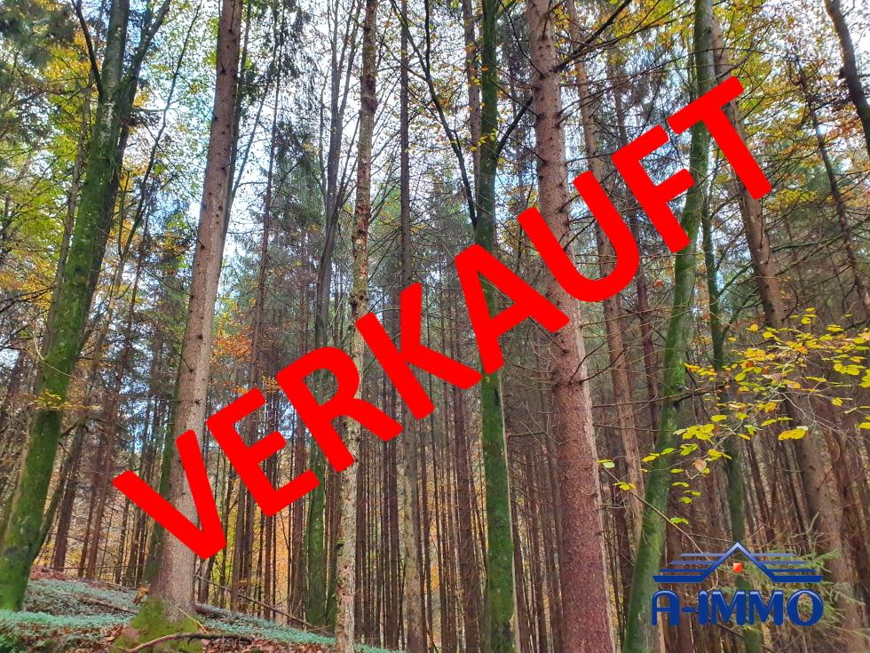 SÜD – OSTSTEIERMARK / STUDENZEN: ZWEI KLEINE LEISTBARE MISCHWÄLDER!