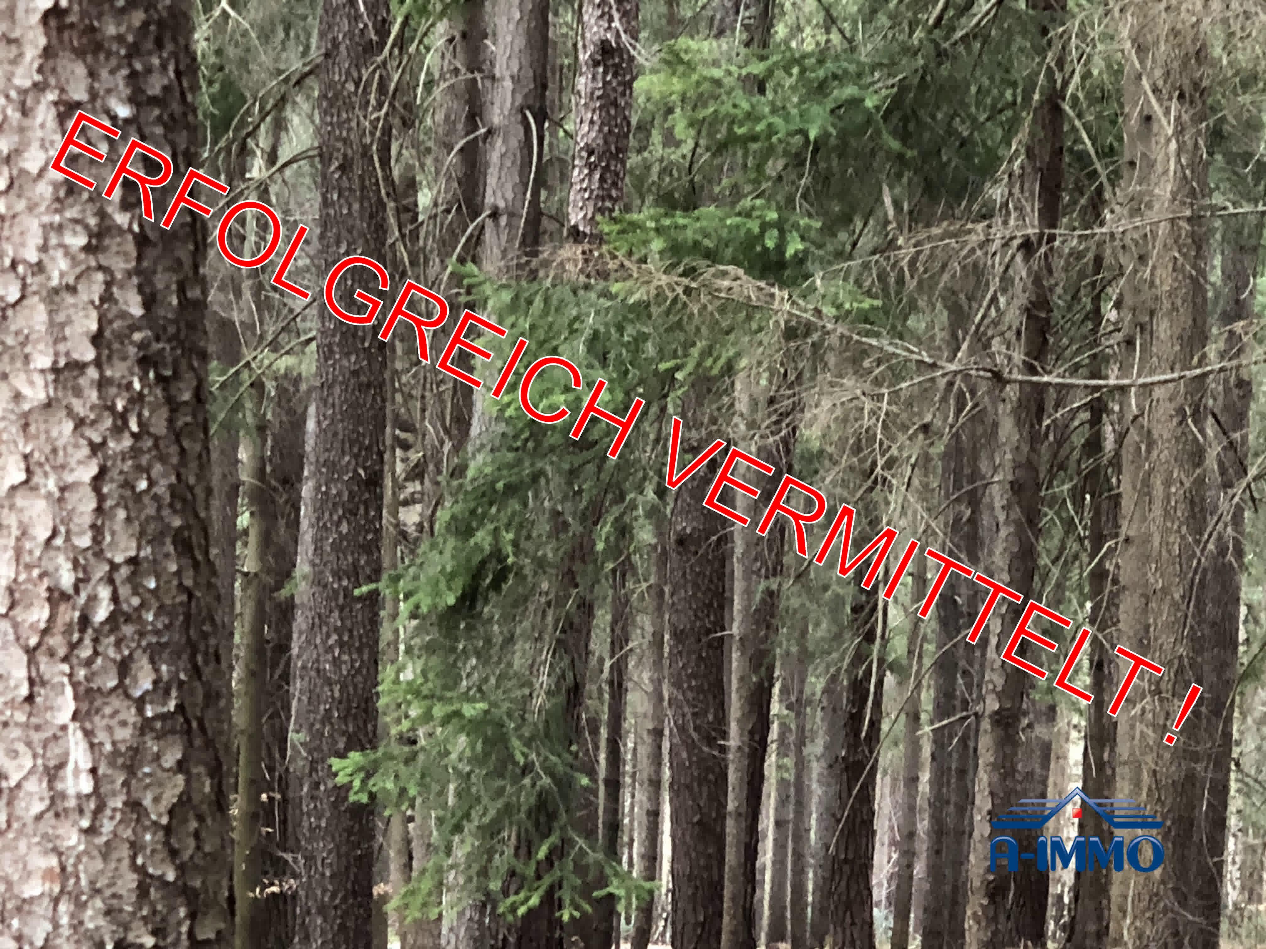 Voitsberg: ca. 5,07ha Wald für forstwirtschaftliche Einsteiger, Energie-Selbstversorger oder als Anlage bestens geeignet.