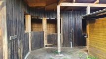 Stall 2 neu